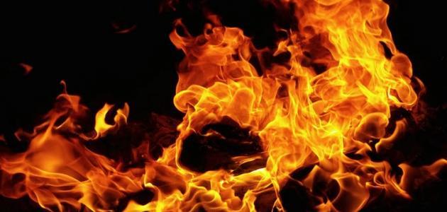 عدد ابواب النار