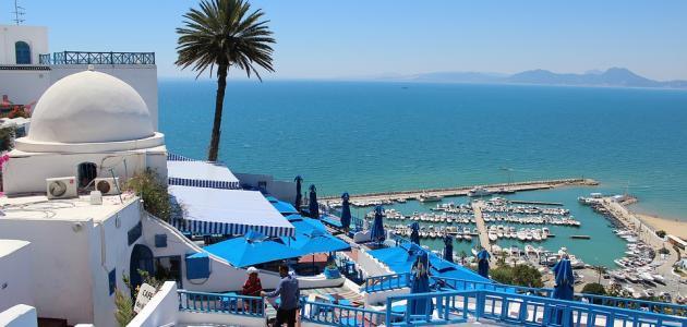 نتيجة بحث الصور عن تونس الجميله