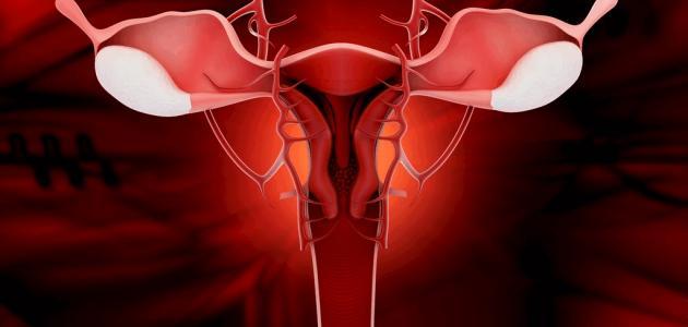 ما أنواع إفرازات الحمل موضوع