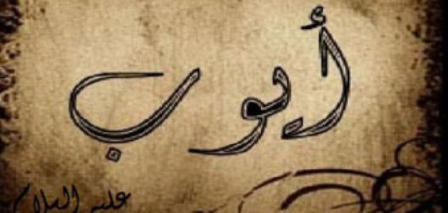 قصة النبي أيوب موضوع