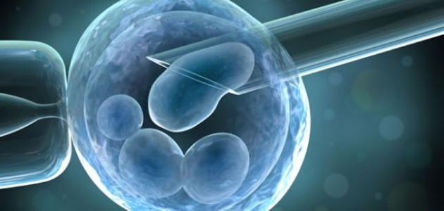 8 علامات تشير إنك حامل بعد عملية الحقن المجهري مستشفي