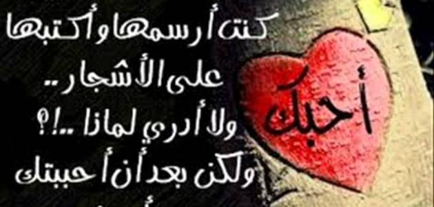 كلمات في الحب والعشق موضوع
