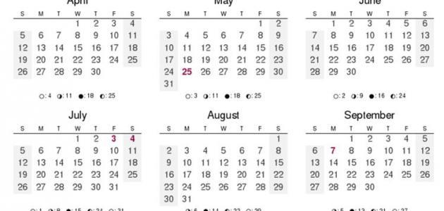 عدد أيام السنة الميلادية موضوع