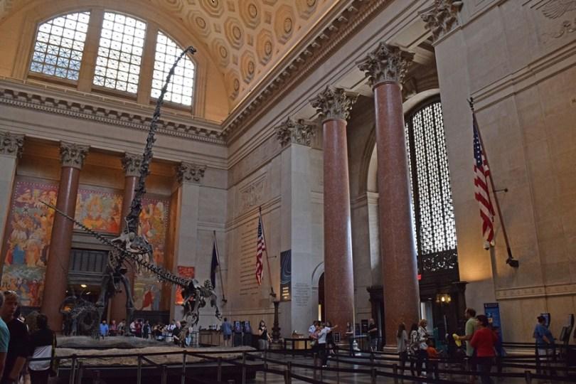 Museu História Natural - Dinossauros