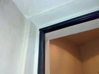Door Seals & Swing Door Dual Durometer Door Seals Part ...