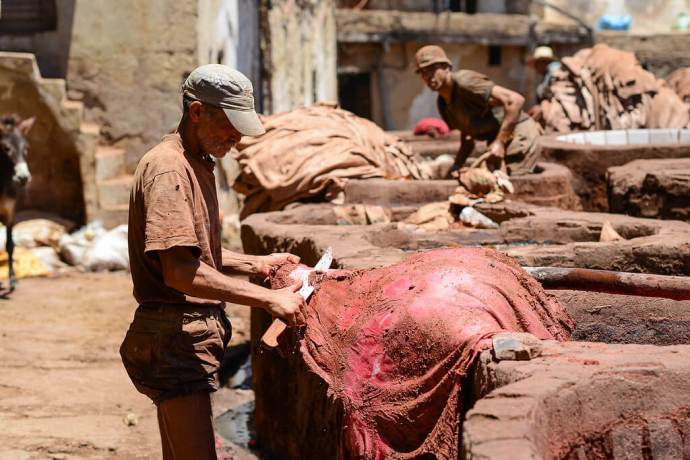 worker in moroccan leather tannery