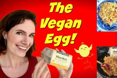vegan egg follow your heart review modvegan