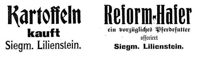 Siegmund Lilienstein