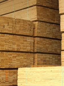 Tips Memilih Bahan Furniture Furniture Kayu Pinus
