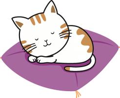 猫 寝る 座布団