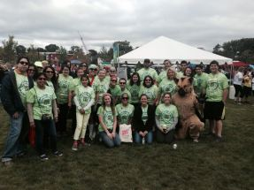 """My """"Just Say Mo"""" team at the 2013 Liver Life Walk in Stamford, CT on September 29, 2013."""