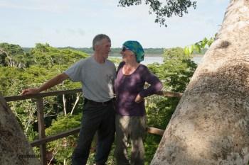 in the jungle canopy