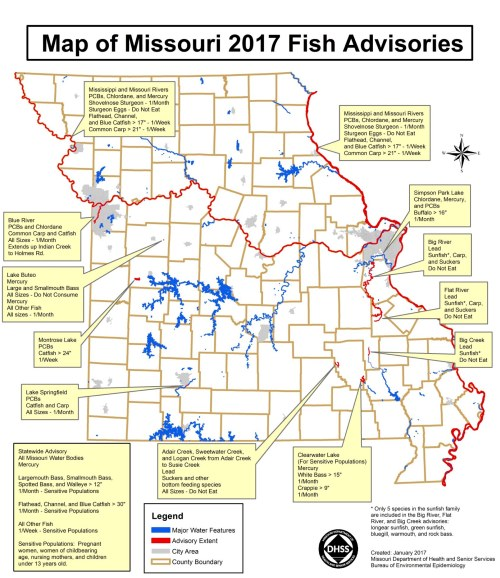 small resolution of source missouri department of health and senior services