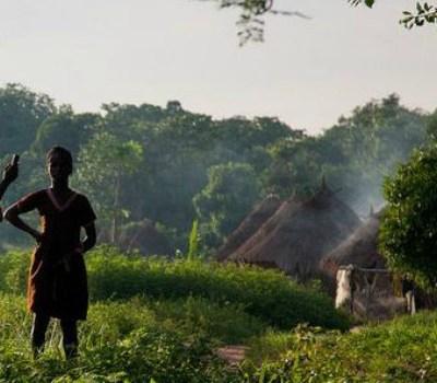 rural Africans Mobile money