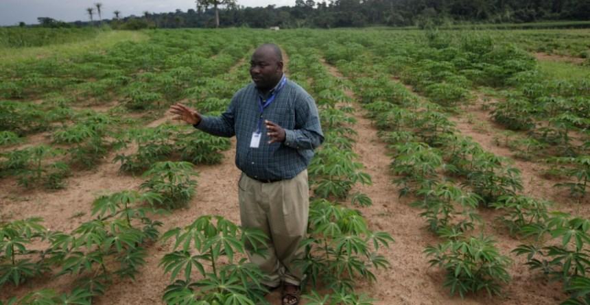 Nigerian agritech startup