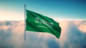 المملكة العربية السعودية ، فلسلفة النشأة ، تنظيراً وتطبيقا.