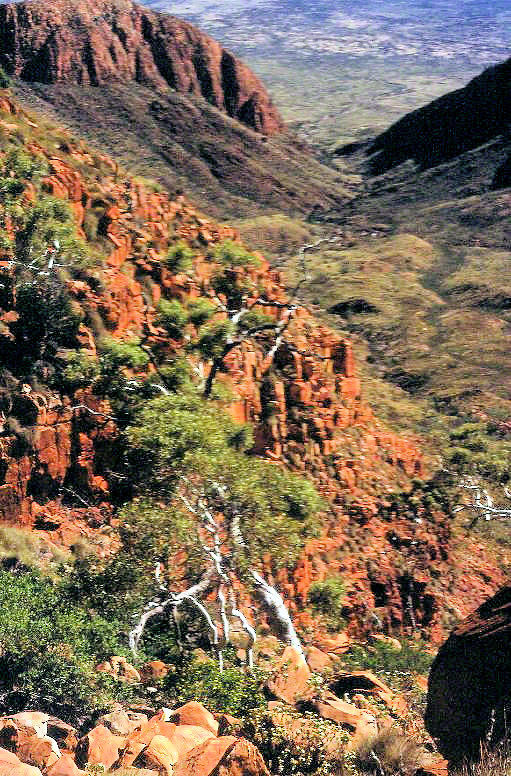 mt liebig the gully
