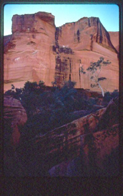 KINGS CANYON CLIFFS-CDT1981