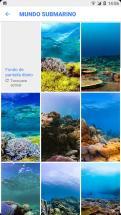 Google-Wallpapers-1