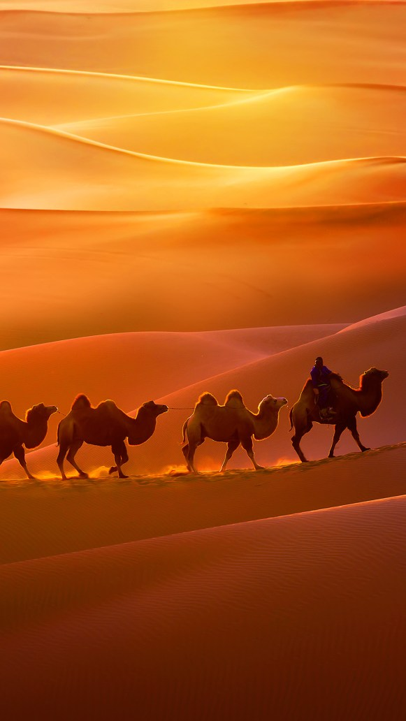 ZTE-Blade-A510-Stock-Wallpapers-Mohamedovic (11)