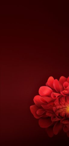 Oppo-R15-Stock-Full-HD-18-9-Wallpapers-Mohamedovic (3)