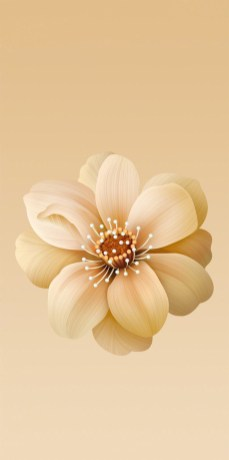 Xiaomi-Mi-A2-and-Mi-6X-Stock-Wallpapers-Mohamedovic (2)