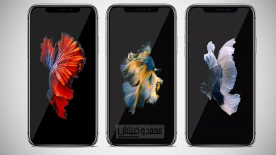Turn Videos into Live Wallpapers on iPhone