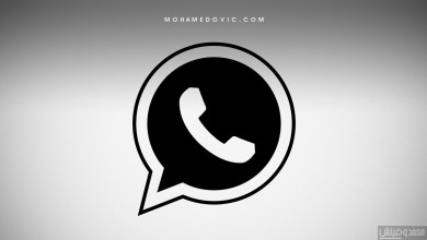 Send WhatsApp Messages Without Saving Number
