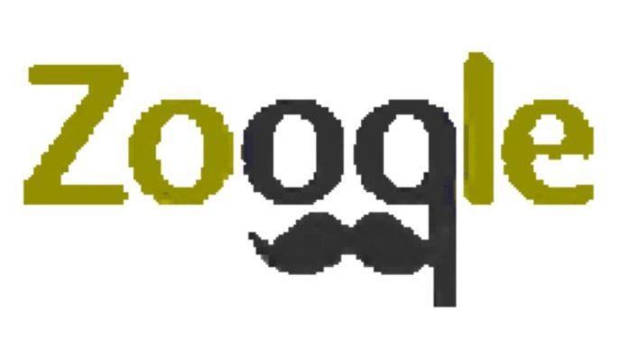 موقع zooqle لتحميل التورنت