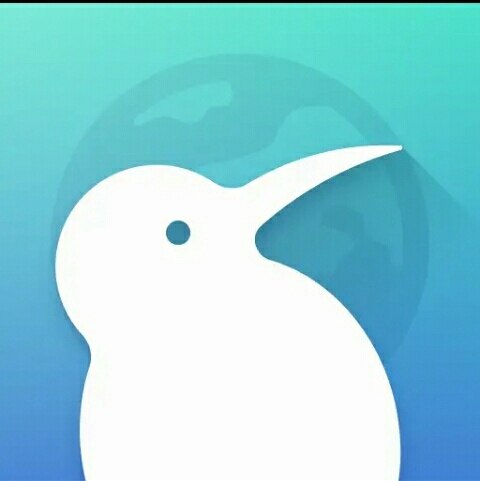Puffin Browser أفضل 6 تطبيقات للتصفح تحتوي على فلاش