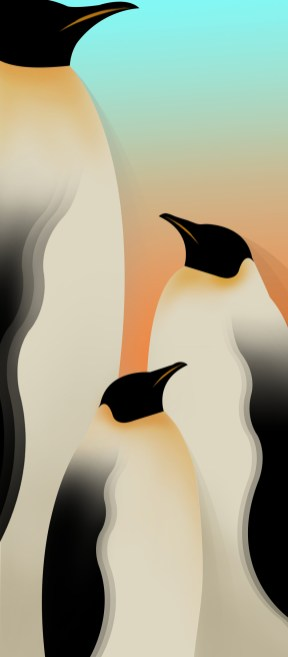 Infinix-Hot-10-Wallpapers-Mohamedovic.com (3)