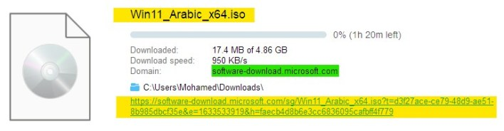 Get Stable Win 11 ISO 04