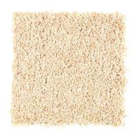 Looking for Pet-Friendly Carpet? Mohawk has Pet-Proof ...