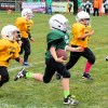 Little Giants Football results for October 2nd and 8th