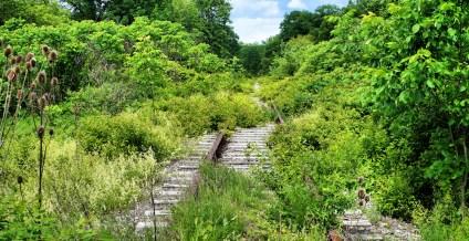 railroad5