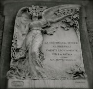 Siena - Istrice