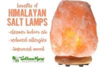 What are Salt Lamps? - Mohini Vidya