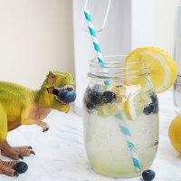 #hansguenthers Fizzy Ingwer Drink + SodaStream EASY Gewinnspiel