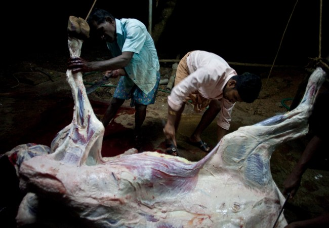 Unnikrishnan Raveendranathan : Blood Money #12