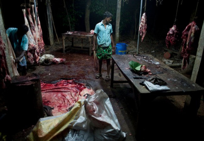 Unnikrishnan Raveendranathan : Blood Money #35