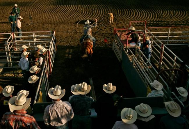 Scott Macdonald: Glen McDowell , California Rodeo Salinas, 7/17/09