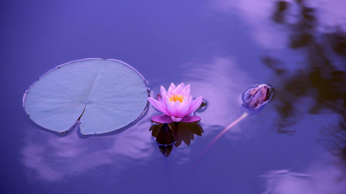Comment être en harmonie avec soi-même ?