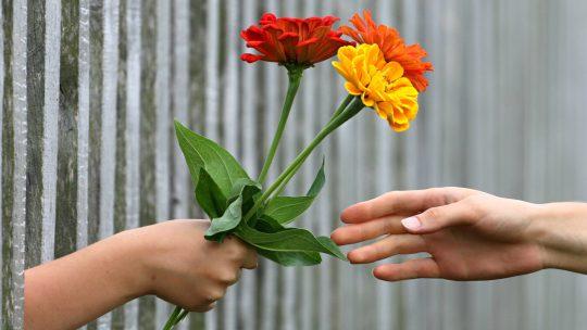 Pour vous faire du bien, faites du bien à quelqu'un d'autre
