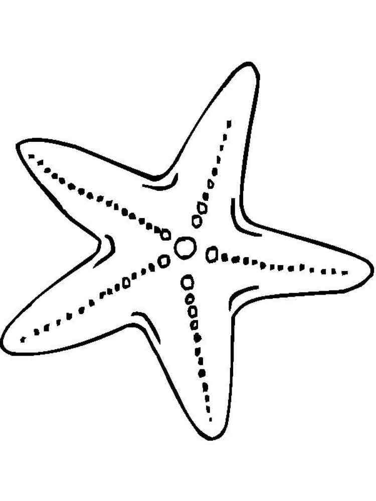 Раскраска Морская звезда. Скачать и распечатать раскраски