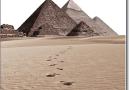 Dấu chân trên cát