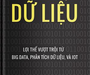 Chiến lược Dữ liệu