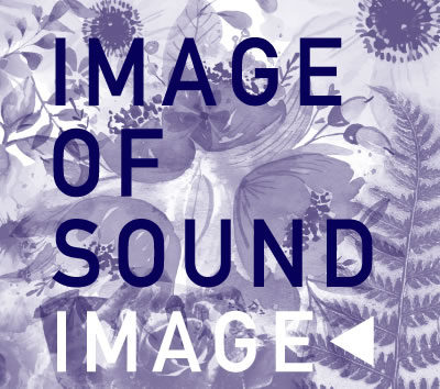 037 IMAGE OF SOUND