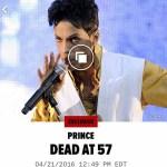 7 Time Grammy Award Winner Prince Dead At 57