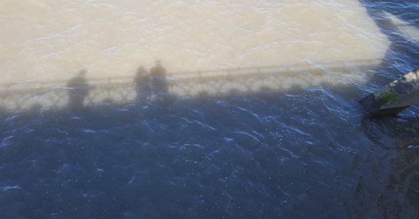 shadows-on-the-sea