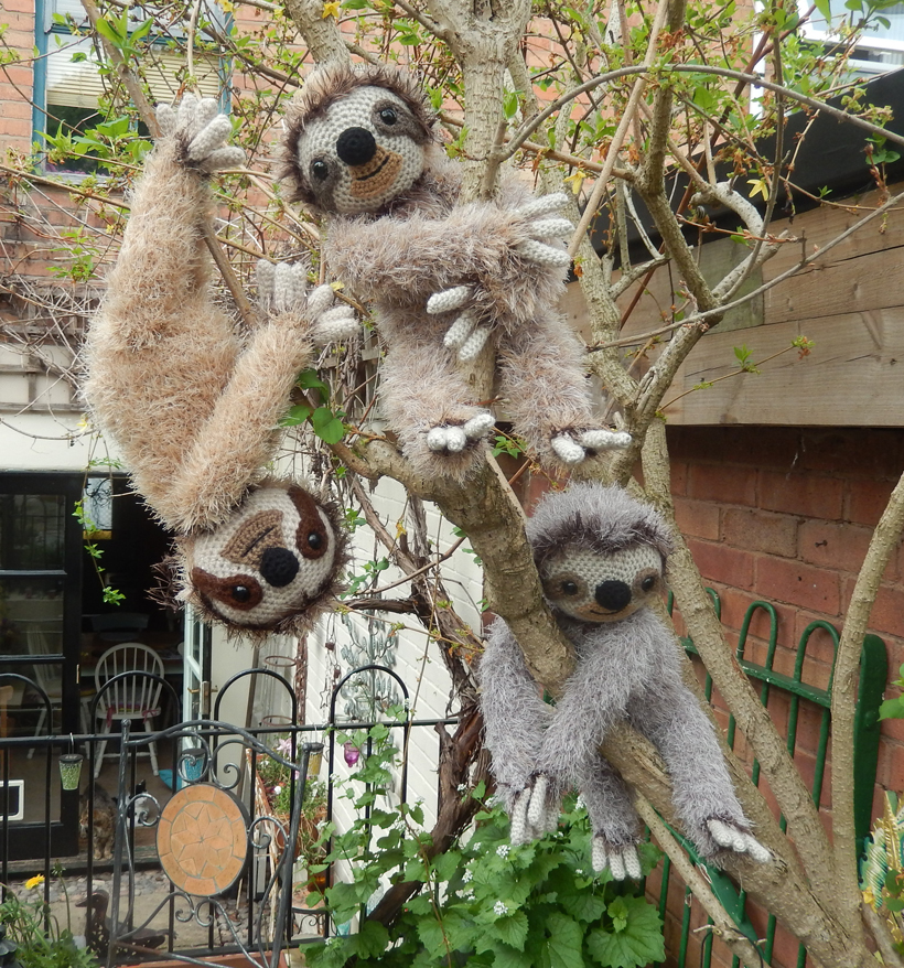 three-tree-sloths